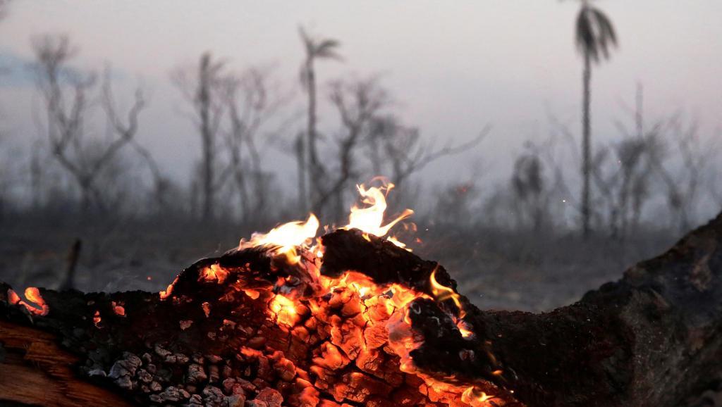 """Incendios en la Amazonía boliviana: """"No hay palabras"""", dice representante indígena"""
