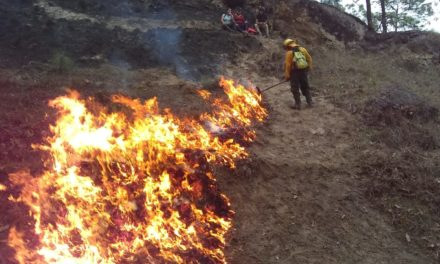 ¿Cuántos incendios forestales están activos en Guatemala?