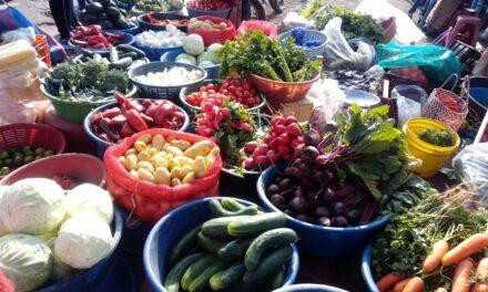 Medidas sanitarias para la compra y consumo de verduras en Quetzaltenango