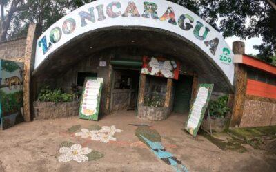 """«No nos abandonen"""": zoológico nacional de Nicaragua impactado por escasos fondos en plena pandemia"""