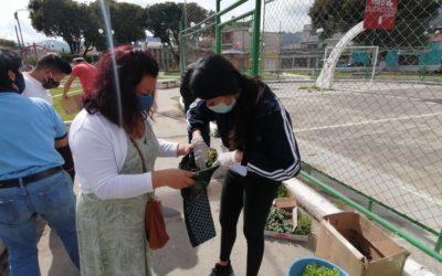 Quetzaltenango | Huertos urbanos, para familias sustentables