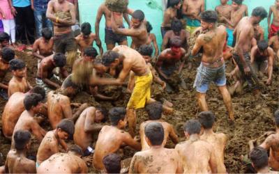 Batalla de excrementos de vaca en la India. Una fiesta que tiene sentido religioso para quienes participan