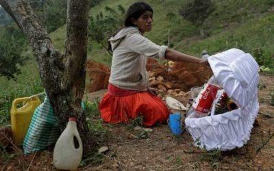 Guatemala: Aunque SESAN lo niega, relacionan muerte de niña a desnutrición