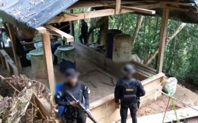 PNC erradica arbustos de coca y destruye narcolaboratorio