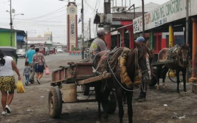 Nicaragua: expertos escépticos ante optimismo económico del gobierno