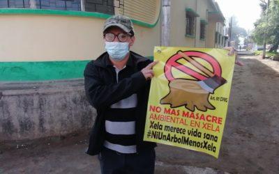Organizaciones se unen para comenzar campaña en contra de la tala de árboles en Xela