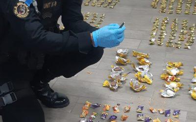 Agente K-9 localiza cocaína escondida dentro de dulces de chocolate que iban en paquetería a  EE.UU.