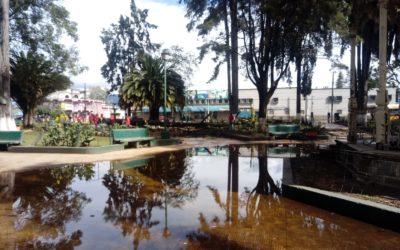 Autoridades creen que lluvia y edad de árboles, son factores de riesgo aumentado estos días en Xela
